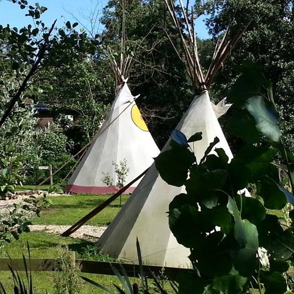 5 Teepees to rent